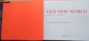 Old New World book preview
